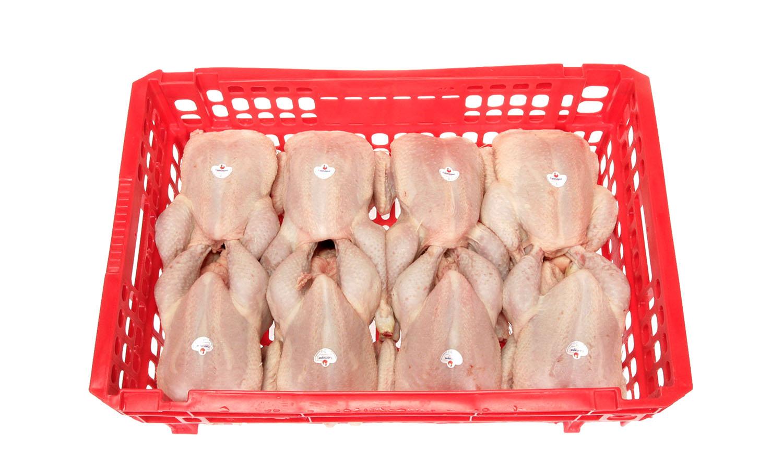 Pollo entero en caja granel en diferentes tamaños y formatos